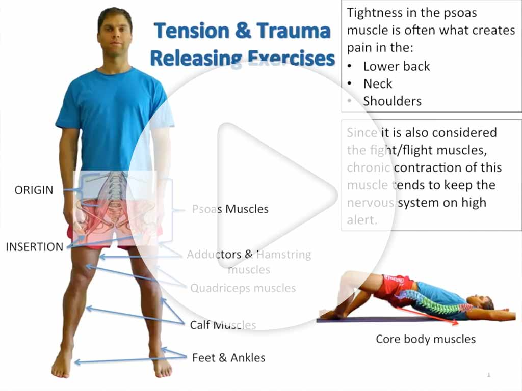 TRE - tension.trauma.realeasing-excercises - video preview